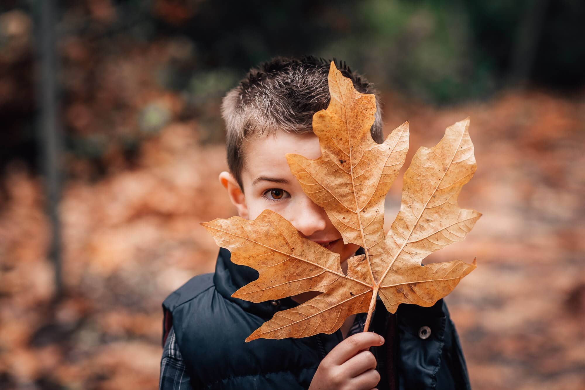 boy peeks out behind giant maple leaf in Burnaby family phoot shoot