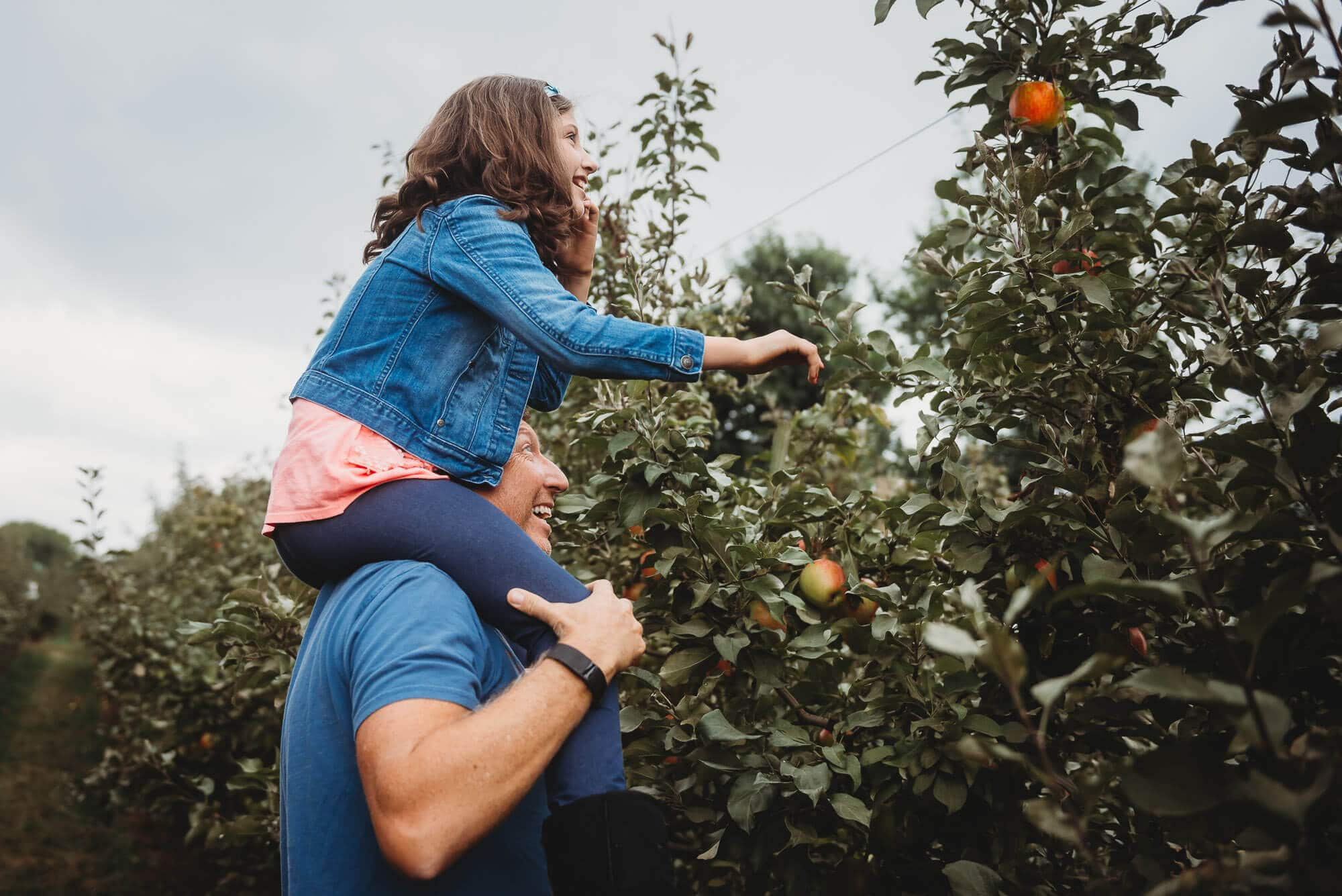 Vancouver lifestyle family photographer captures girl picking apples on dad's shoulders