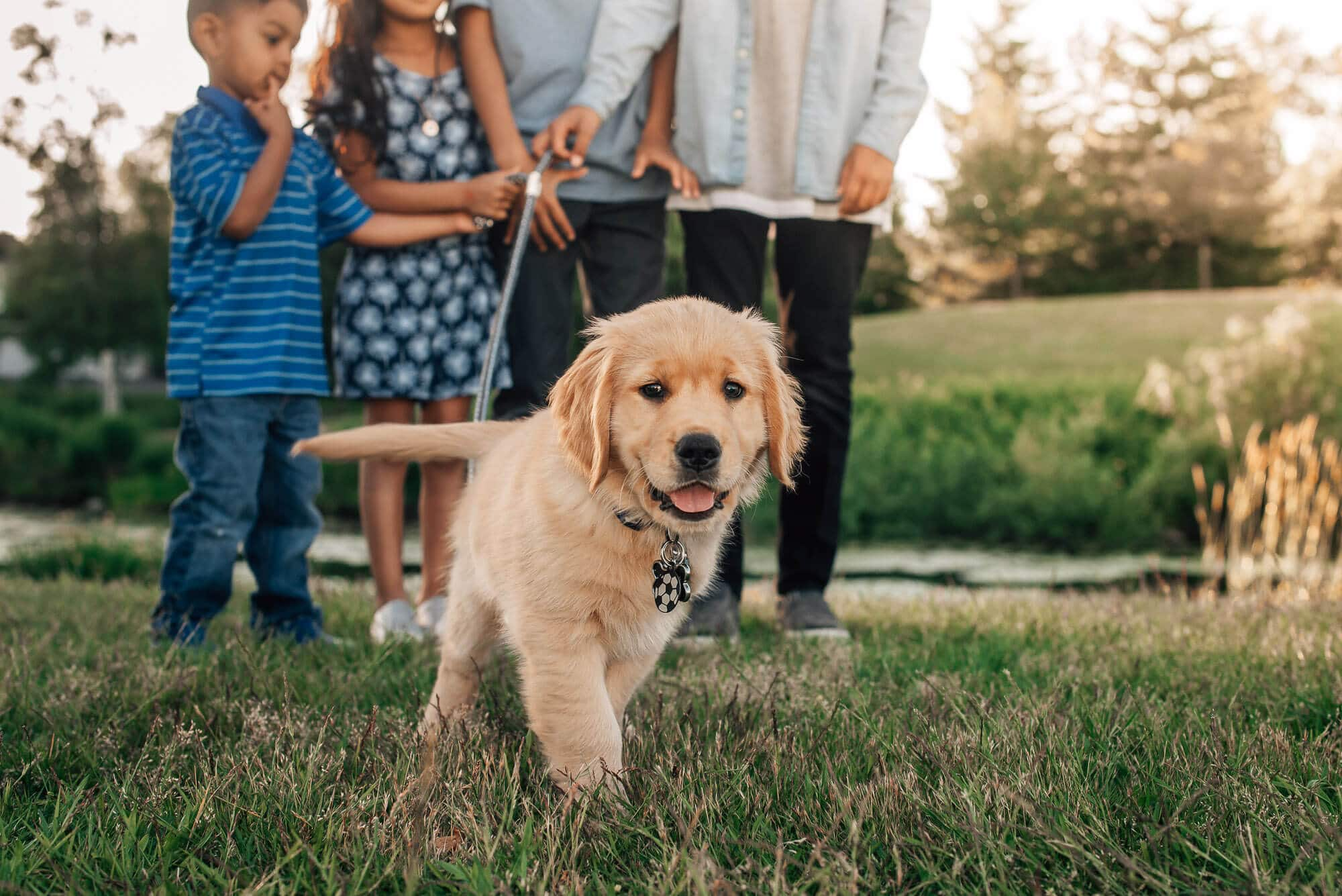 Family Photography session with puppy in Coquitlam
