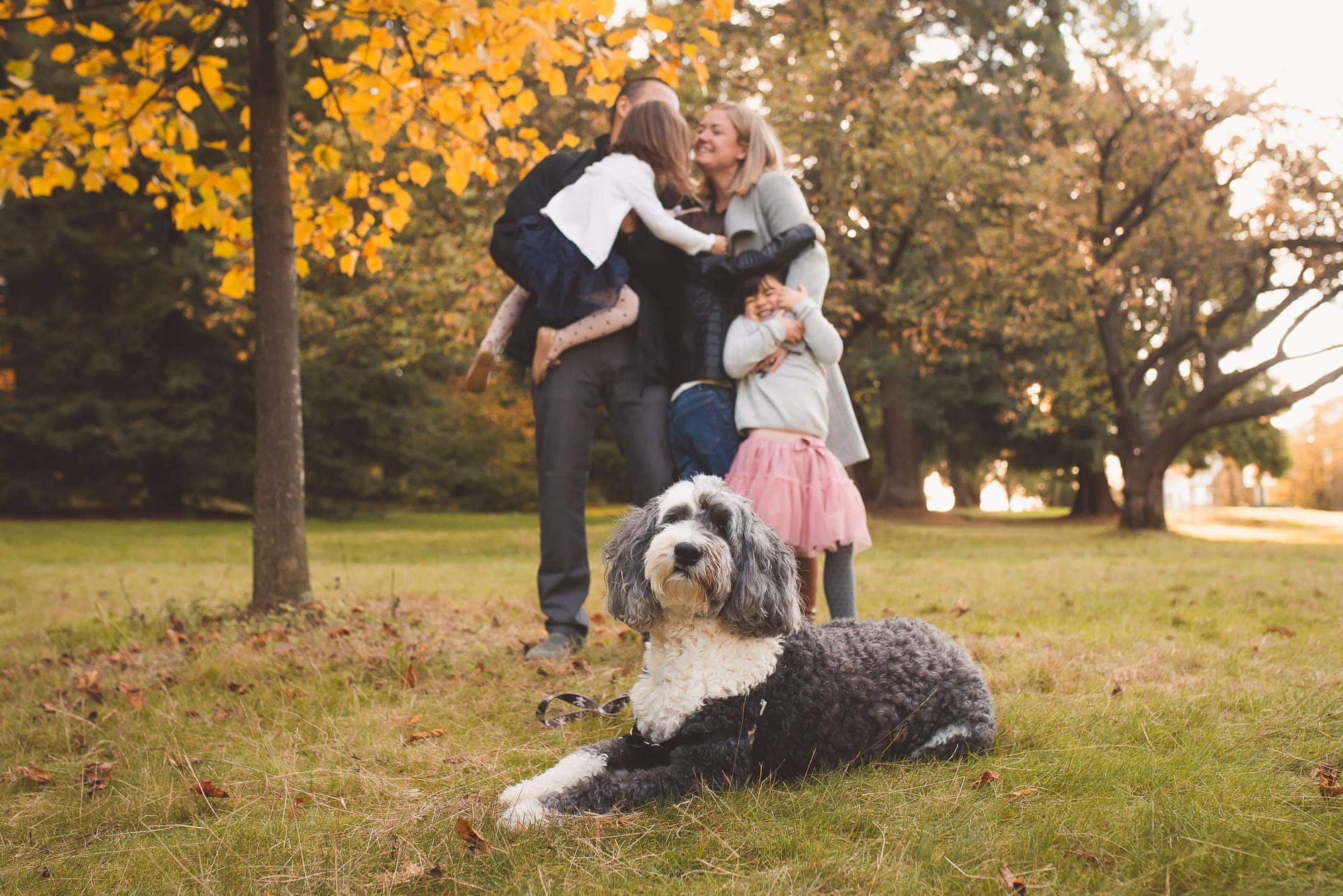 Vancouver Family Photographer makes dog the focus of Queens Park photo session