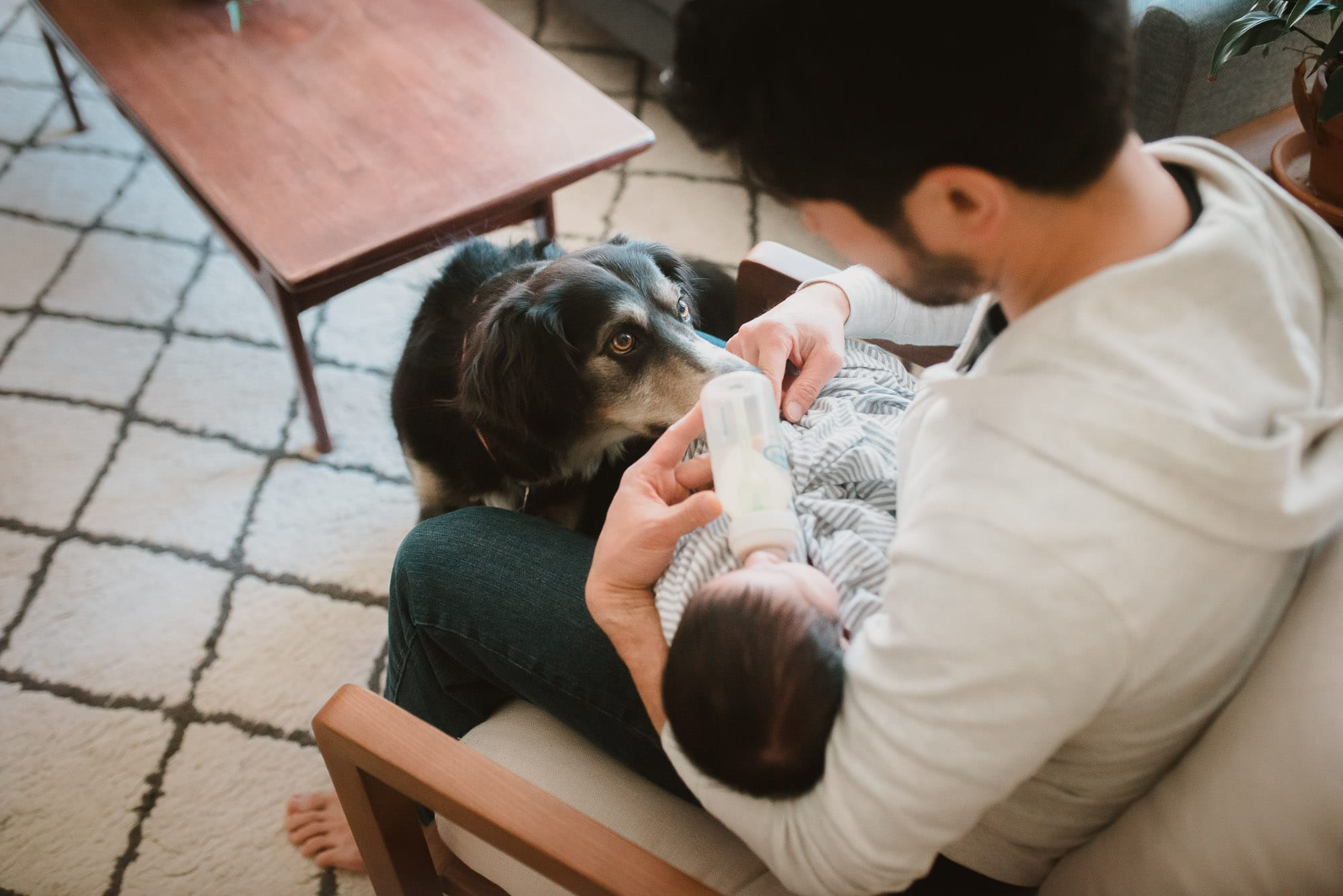 newborn photo session with dog